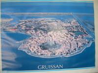 Груиссан 2008