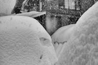 А снег все шел...