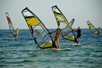 Windsurf Beauties
