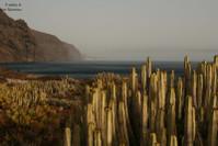 Западная точка Тенерифе