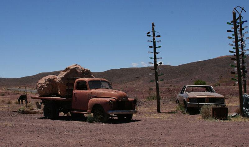 в пустыне можно неожиданно встретить ...что угодно