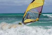 Каталка на Барбадосе-2012