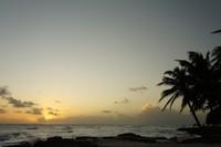 Закат на Сильвер Сендс, Барбадос 2012