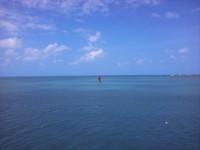 Нечто катамаранно-серфовое в Форталезе, Бразилия
