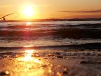 наше Прекрасное Белое море